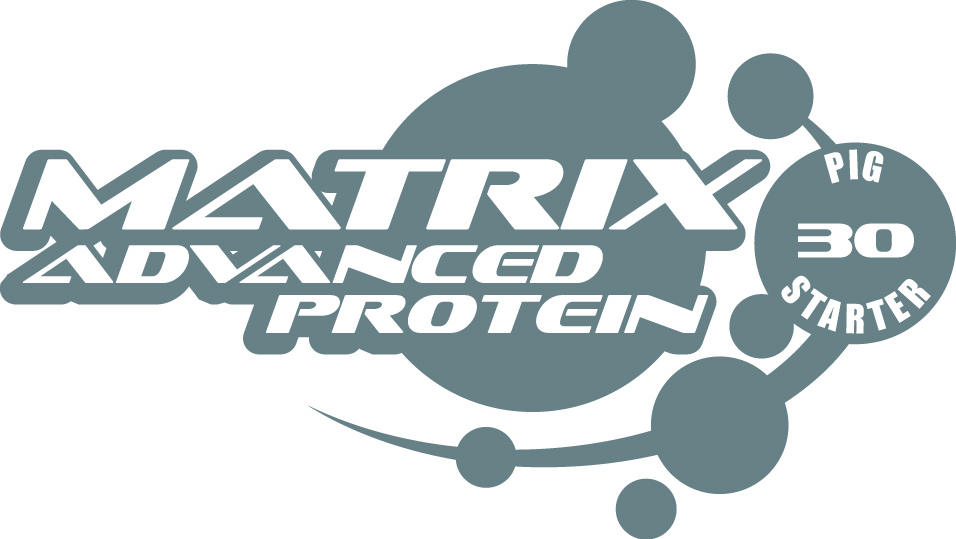 Matrix Product Logo
